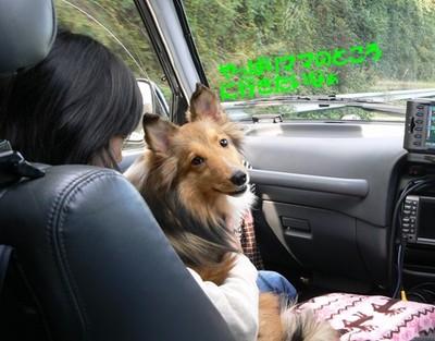 Miyougi_car2