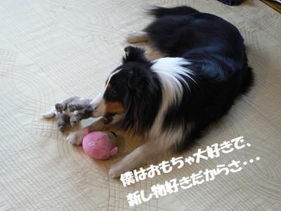 New_toy4