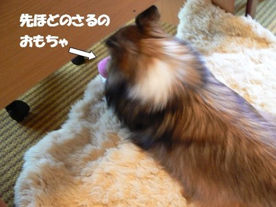 New_toy6_2